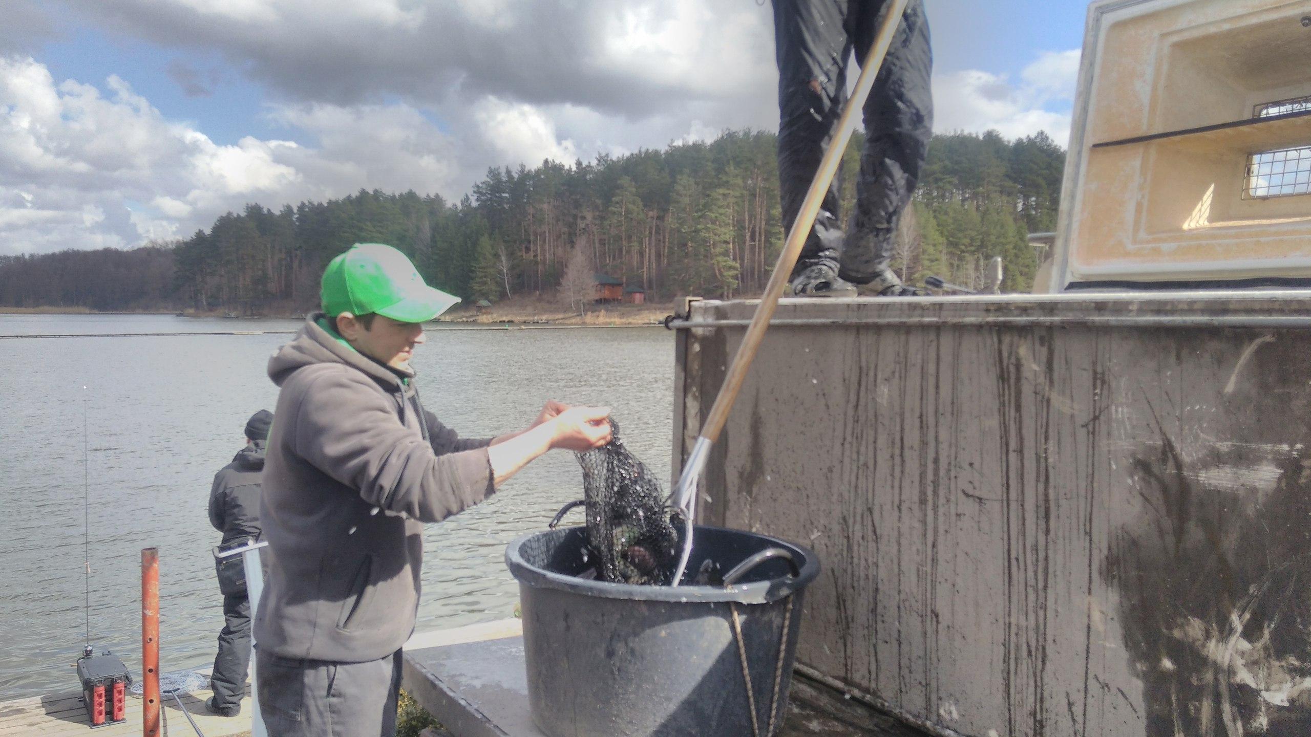 видео рыбалка на платных прудах