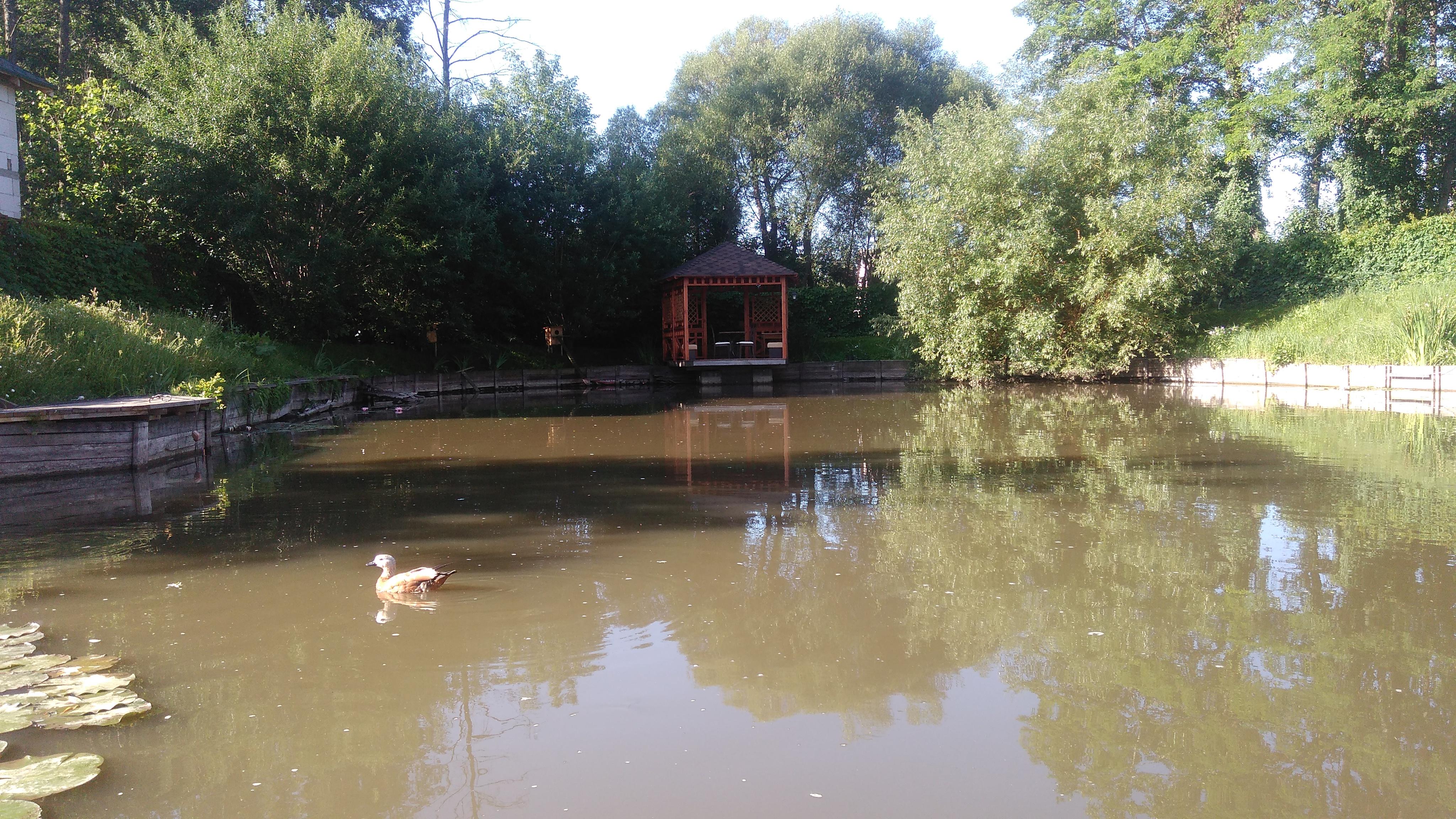 VIP рыбалка в Киевский области